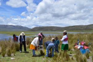 Programa Sierra Azul sembrará agua en Ancash